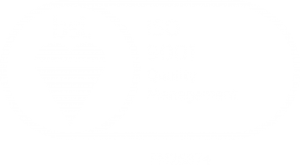 BSI-ISO-9001-Full-V2White